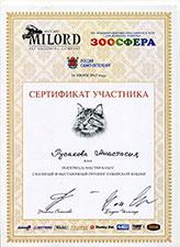 сертификат груминг сибирской кошки
