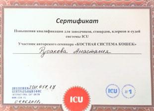 сертификат icu костная система кошек