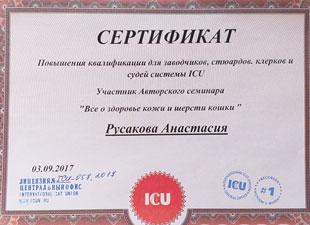 сертификат icu о здоровье кожи и шерсти кошки
