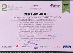 сертификат о посещении мастер класса по грумингу