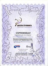 сертификат породная стрижка головы кошек