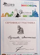 сертификат шоу груминг кошек