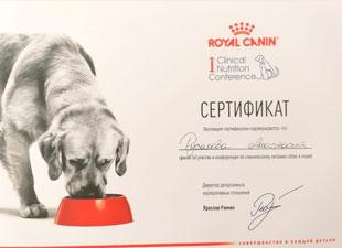сертификт клиническое питание кошек