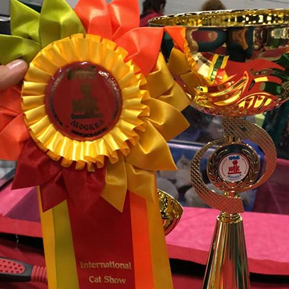 WCF Best in show Premior